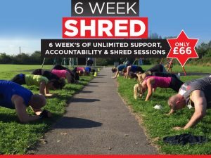 Summer 6 Week Shred
